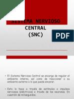 Sistema Nervioso Centralc