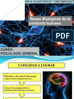 Clase 04 Bases Biologicas[1]