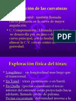 Exploración física del tórax.y columna vertebral