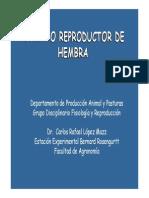 14 - Aparato reproductor hembra.pdf