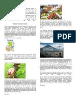 Análisis de los indicadores económicos entre Guatemala y Costa Rica