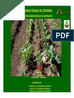 produccion-agroecologica-hortalizas