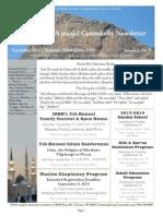 2013Ionanewsletter September