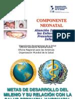 04Introducción AIEPI neonatal