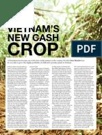Vietnam New Cash Crop