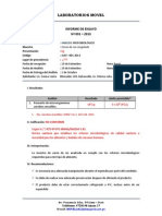 Informe de Ensayo 001