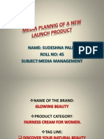 Promotional Plan of a New Lauch Product