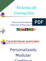 sistema_de_formacion
