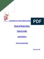 Musculos_mmii.pdf