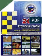 2011 Iloilo Profile