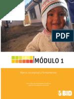 Módulo 1 - Marco conceptual y fundamentos