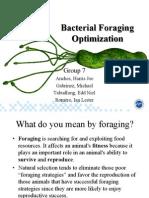 Bacterial Foraging Optimization
