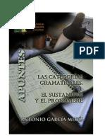 Las categorías gramaticales. El sustantivo y el pronombre