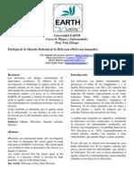 Etiologia de La Mancha Redonda de La Heliconia