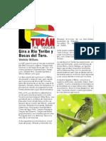 El Tucán—The Toucan. Vol. 31, No. 1. Abril 2008