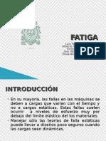 Fatiga Expo