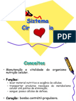 circulatorio_8ano