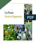 Clase 07 - Tejidos Vegetales