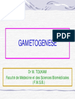 Gametogenese.pdf