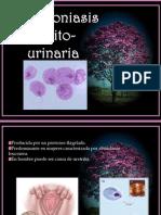 Tricomoniasis genito-urinaria