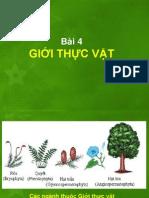 Bai 4 Gioi Thuc Vat