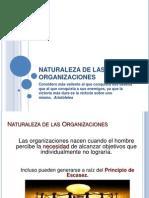 c. Naturaleza de Las Organzaciones
