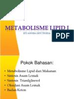 2. Metabolisme Lipid Sederhana