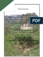 Analisis economico Servicios Ambientales Tartagal