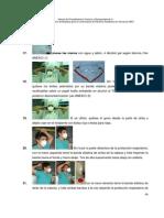 Manual Bioseguridad Nfluenza Pandemica h5n1 P2