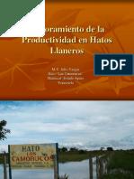 Mejoramiento de La Productividad en Hatos Llaneros.iii