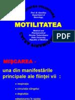 31_MotilitateaPrez