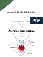 Fisiologia da glandula tireoíde