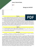 02-Estudo Do Bico de Bunsen e Teste de Chama