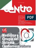 Centro Veterinario 19