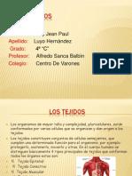 lostejidos-090809165700-phpapp02