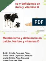 Metabolismo y Deficiencia en Calcio, Fosforo y