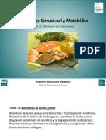 Tema 15. Biosintesis de Acidos Grasos