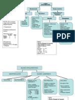 Protocolo Anestesia 2