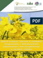 rzepak_web_2012(1)
