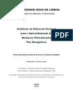 Avaliação do Potencial Nacional Para produção de Energia Portugal