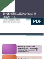 epigenetica de la cognición