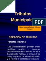 TRIBUTOS MUNICIPALESII