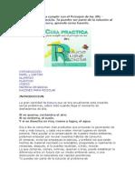 Guía Práctica para cumplir con el Principio de las 3Rs