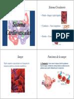 Clase 1 CardiovascularUAC [Modo de Compatibilidad]