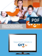 Gvt Tv Manual
