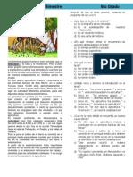 6to Grado - Bimestre 1 (2012-2013)