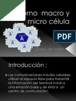 Entorno  macro y micro célula
