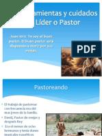 Las herramientas y cuidados del Líder o Pastor