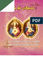 Libro de Los Sagrados Corazones Para Bublicar en Blog