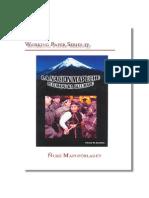 historia mapuche completísima